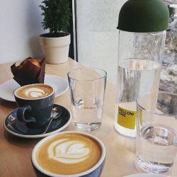 Fellow one  aroma de cafea si soare de iarna tarzie